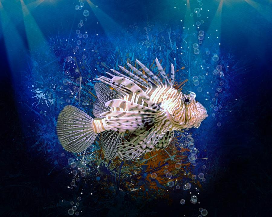 ScottDecor Colorful Under Sea Fish Aquarium Funky Pop Art Stylized Radiant Lines Design in Wave-Like Color Reflections Image Home Fish Tank Backdrop Multicolor L48 X H18 Inch