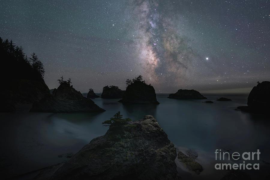 Sea Rock Stars by Michael Ver Sprill