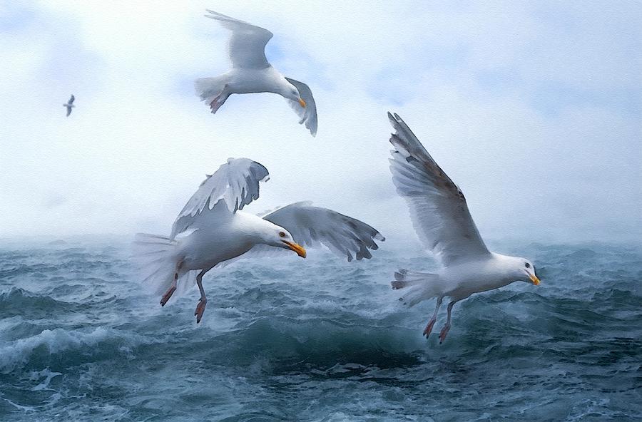 Seagull Seascape Near Newporthurst -on -sea L B Digital Art