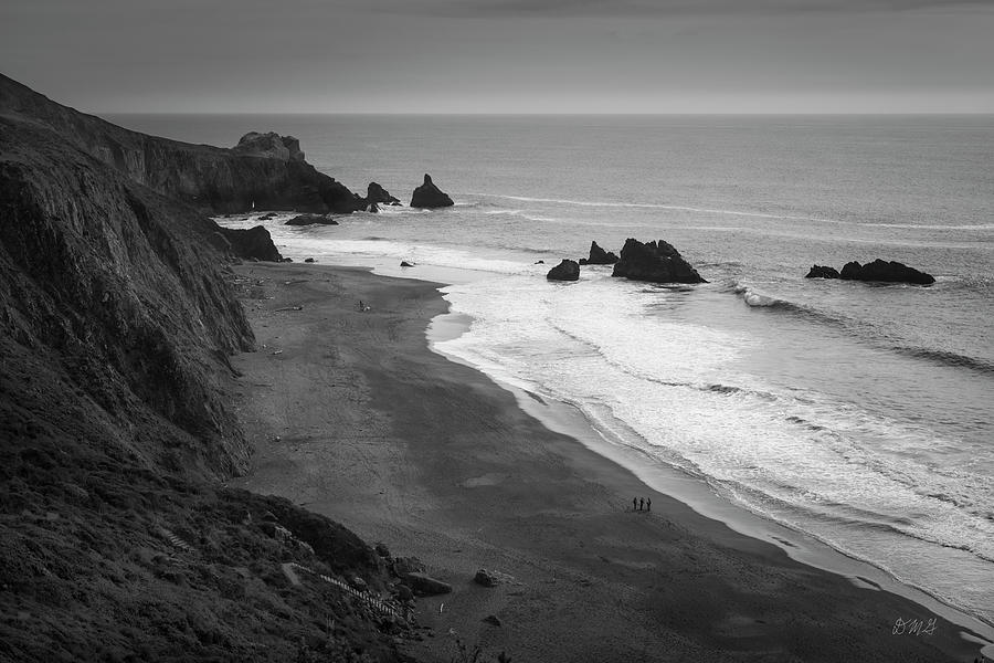 Seascape Jenner California VI BW by David Gordon