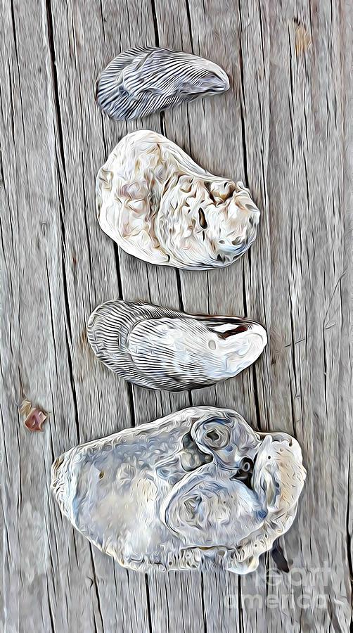 Seashell Beauty by Tracy Ruckman