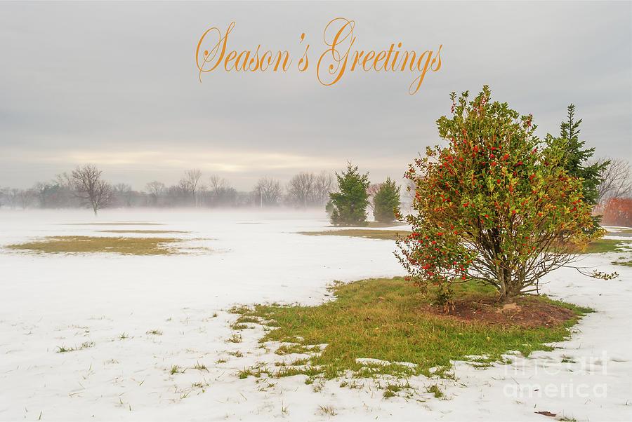 Season's Greetings - Lonely Shrub by Len Tauro