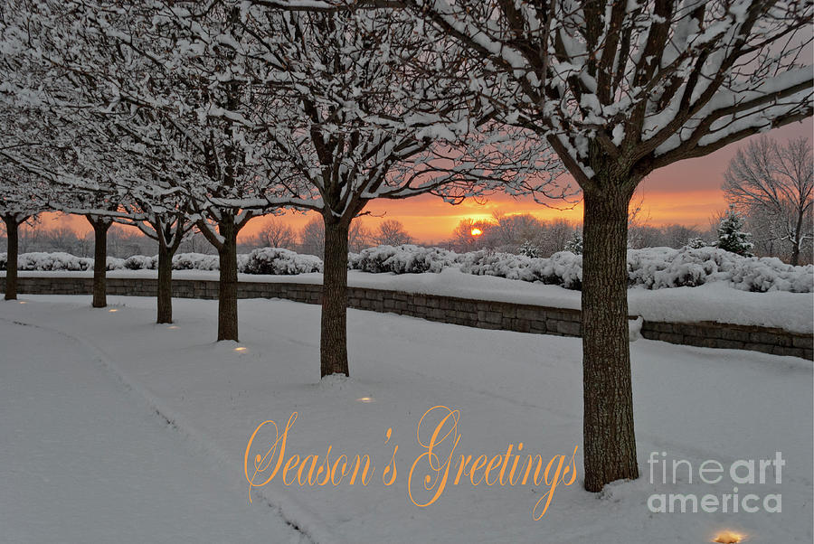 Season's Greetings - Sun Watchers by Len Tauro