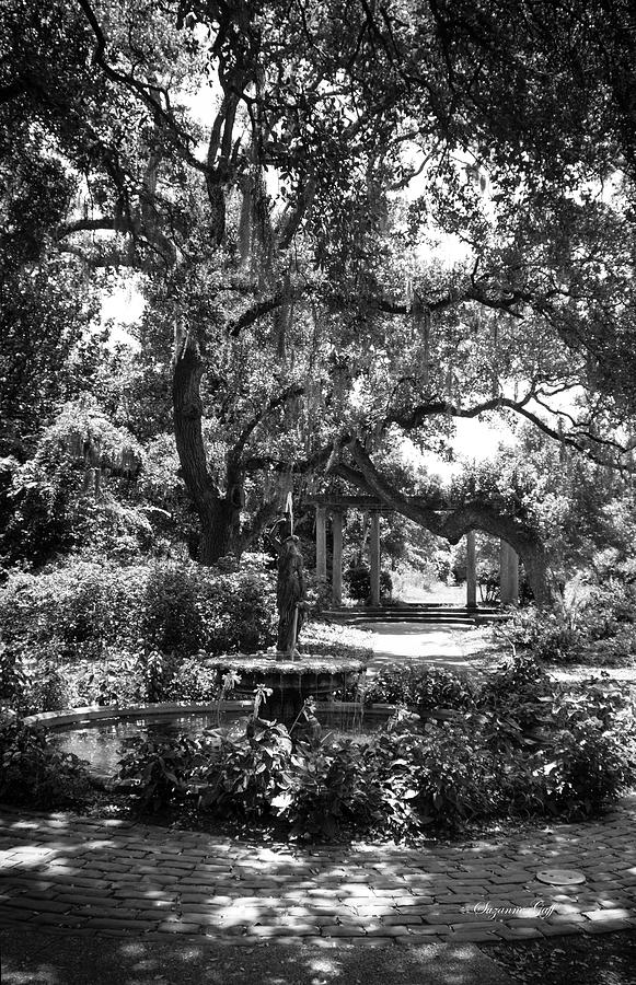 Secret Fountain IIi In Black And White Photograph