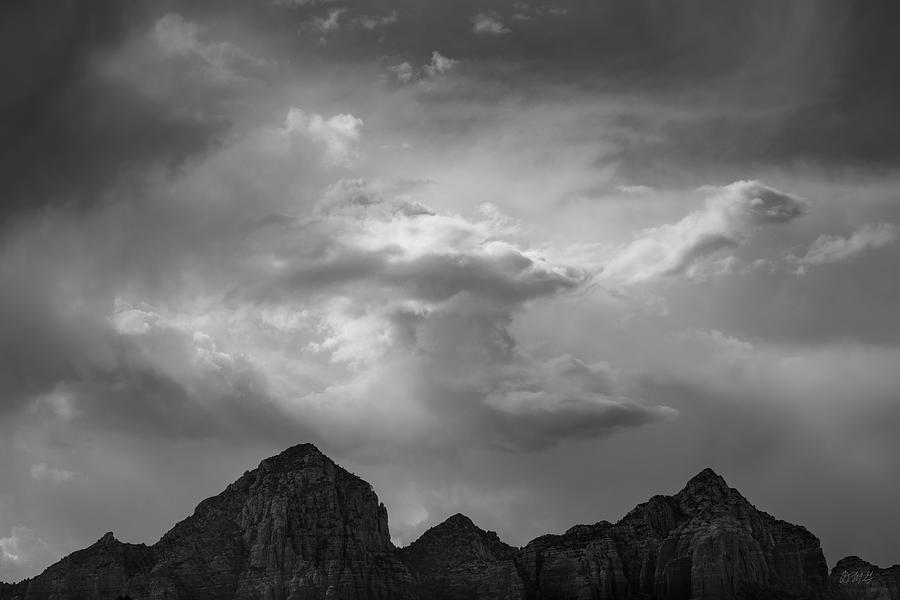 Sedona Landscape XXII BW by David Gordon