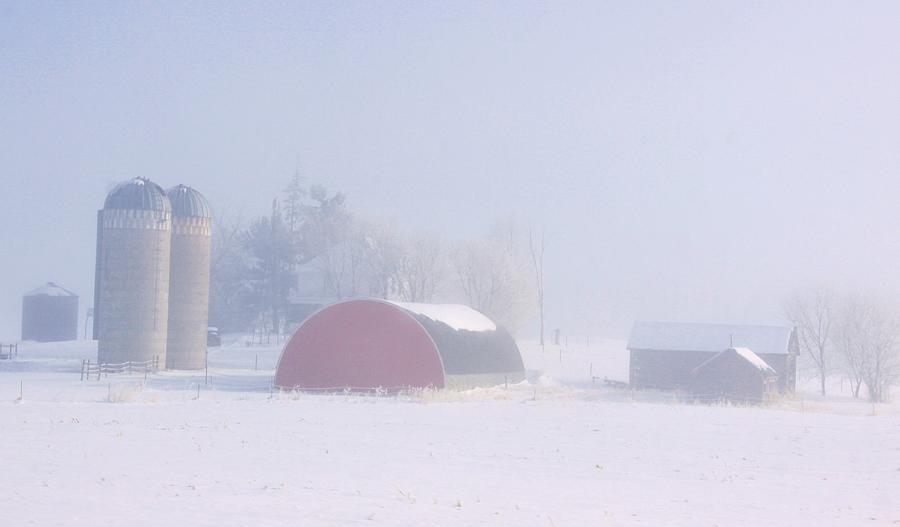 Seen Through The Fog Photograph