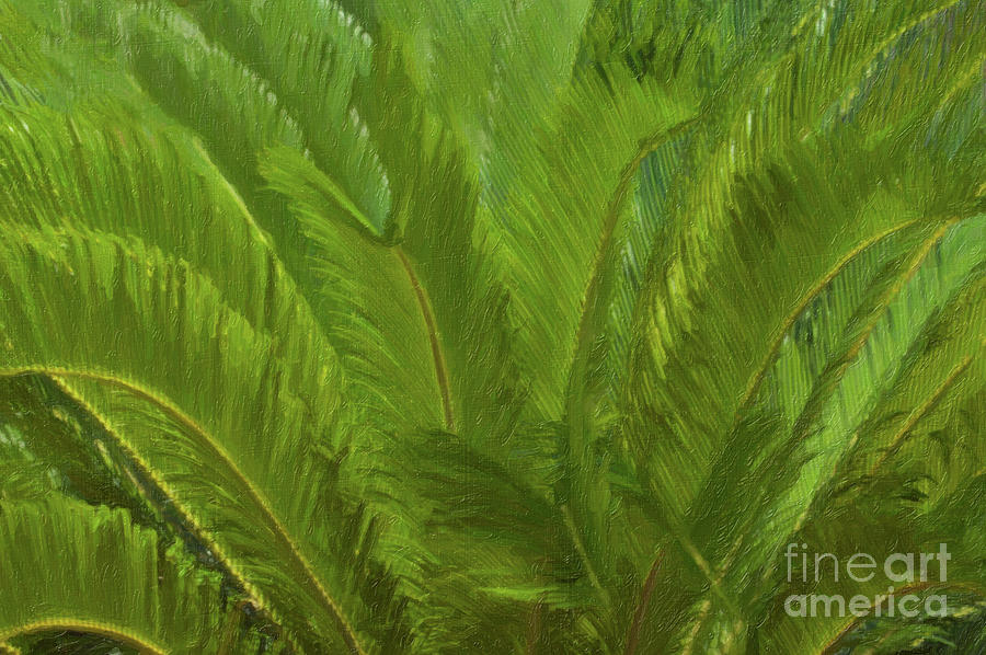 Sago Palm - Tropical Palm Painting