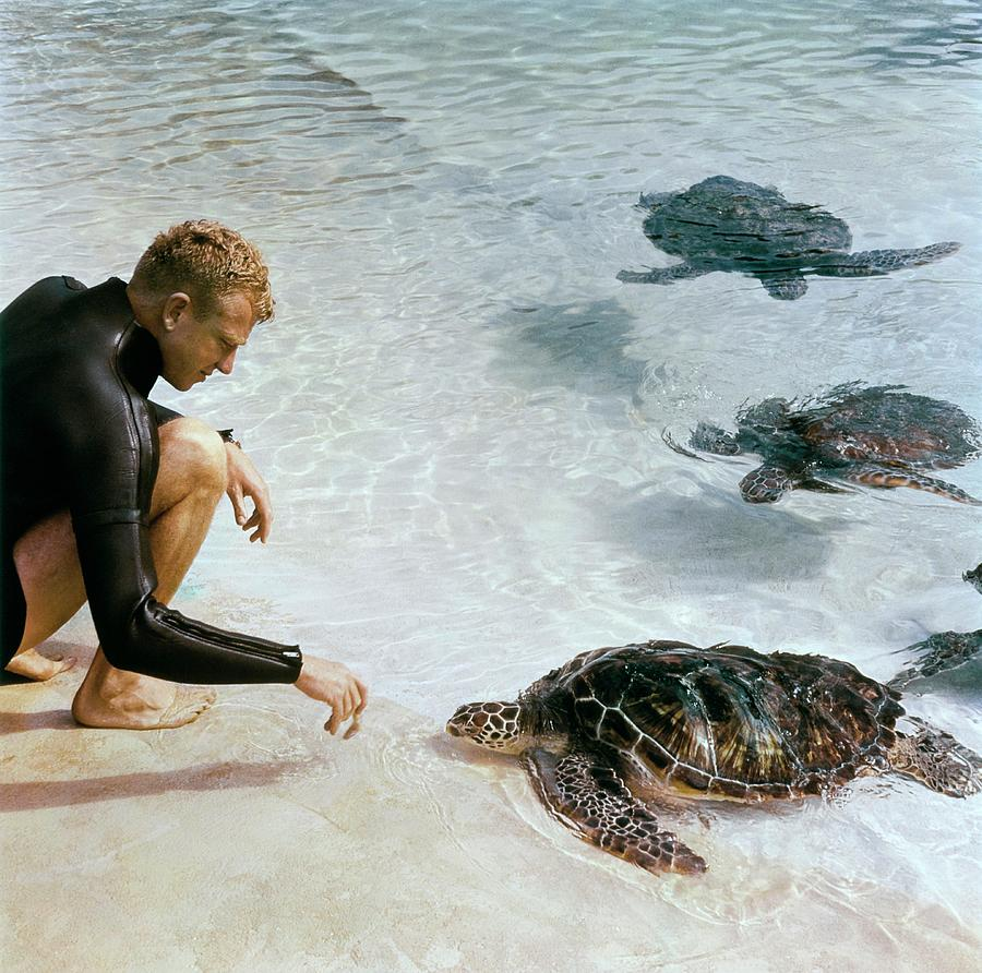 Senator Taylor Pryor With Sea Turtles Photograph by Horst P Horst