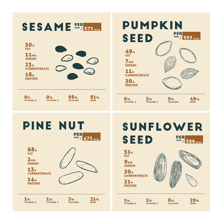 Sesame Seed Pumpkin Seed Pine Nut Sunflower Seed Nutrition Facts Drawing By Beautify My Walls