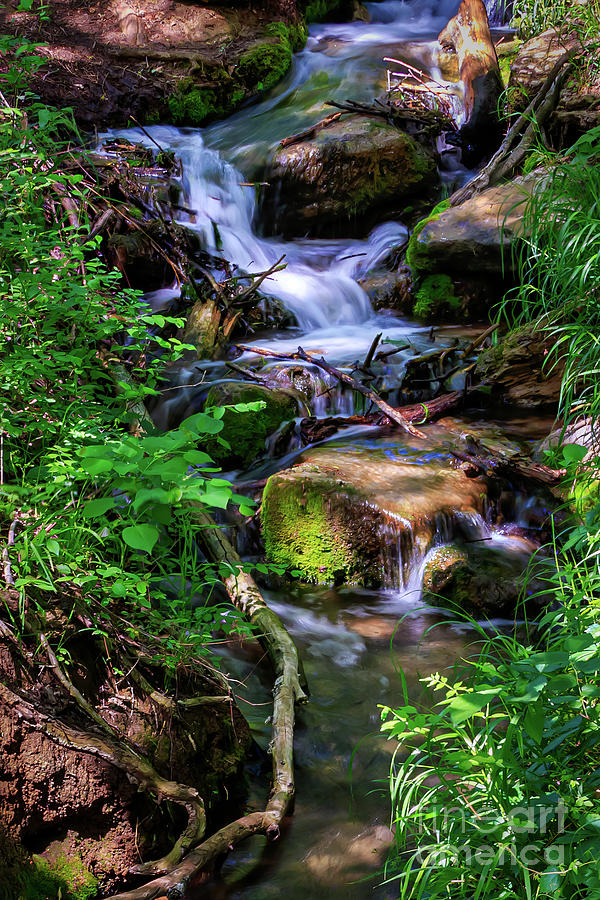 Shaded Creek In Roman Nose State Park Photograph