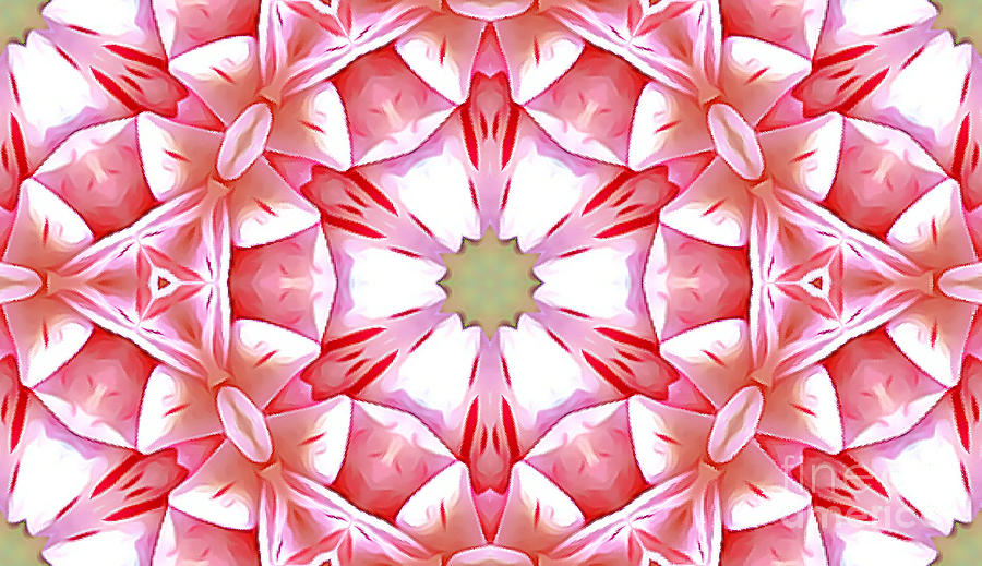 Shades of Red Abstract by Tracy Ruckman