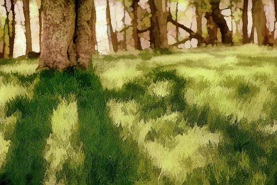 North Carolina Painting - Shadows in the Grass ap by Dan Carmichael