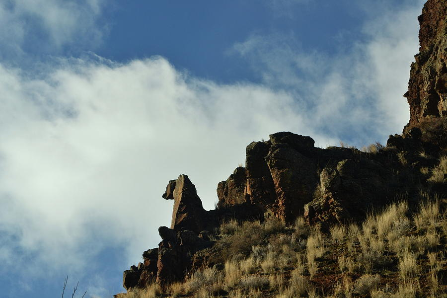 Rock Photograph - She Looks Hungry by YHWHY Vance