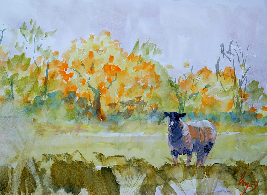 Sheep in autumn landscape by Mike Jory