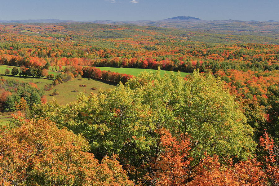 Shelburne Fire Tower Fall Foliage Photograph