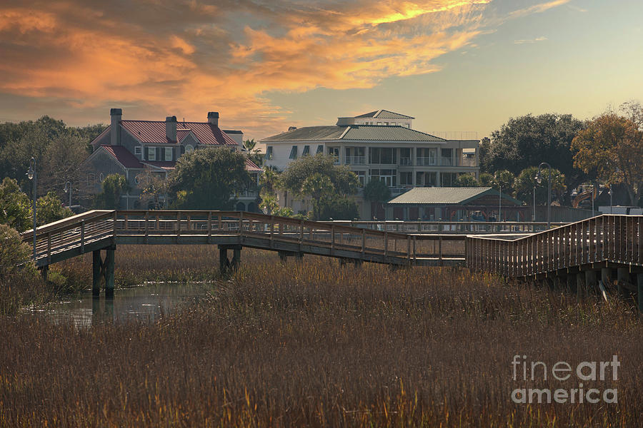 Shem Creek Homes - Winter Marsh Grass Photograph
