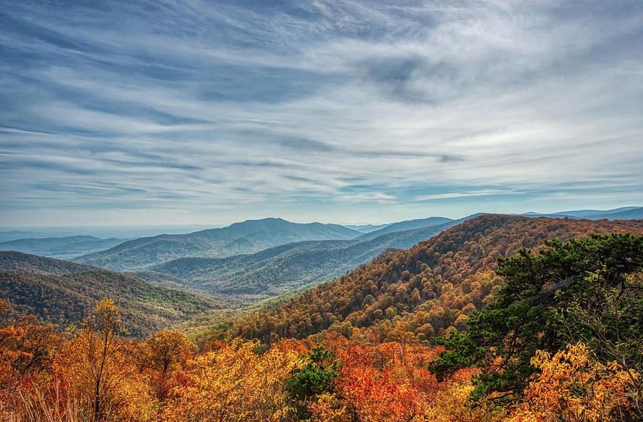 Shenandoah National Park Autumn 2016 by Lara Ellis