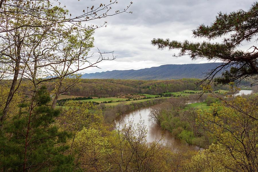 Shenandoah Springtime 3 Photograph