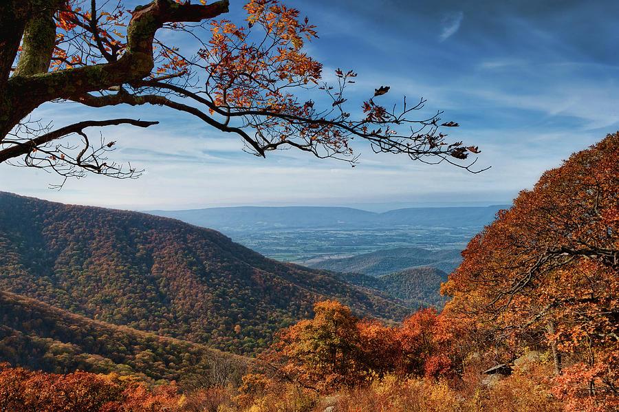Shenandoah Valley From the Blueridge by Lara Ellis
