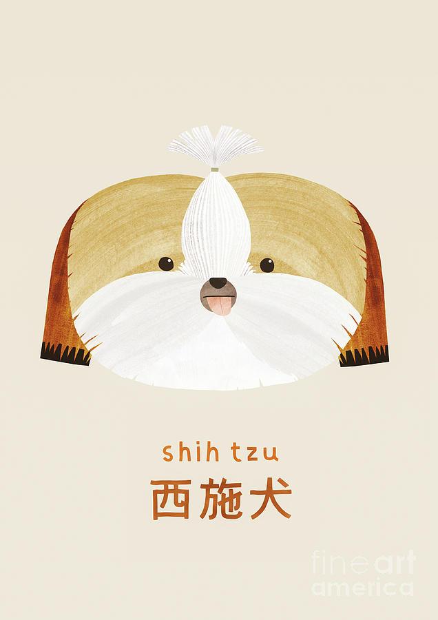 Shih tzu by Lea Le Pivert