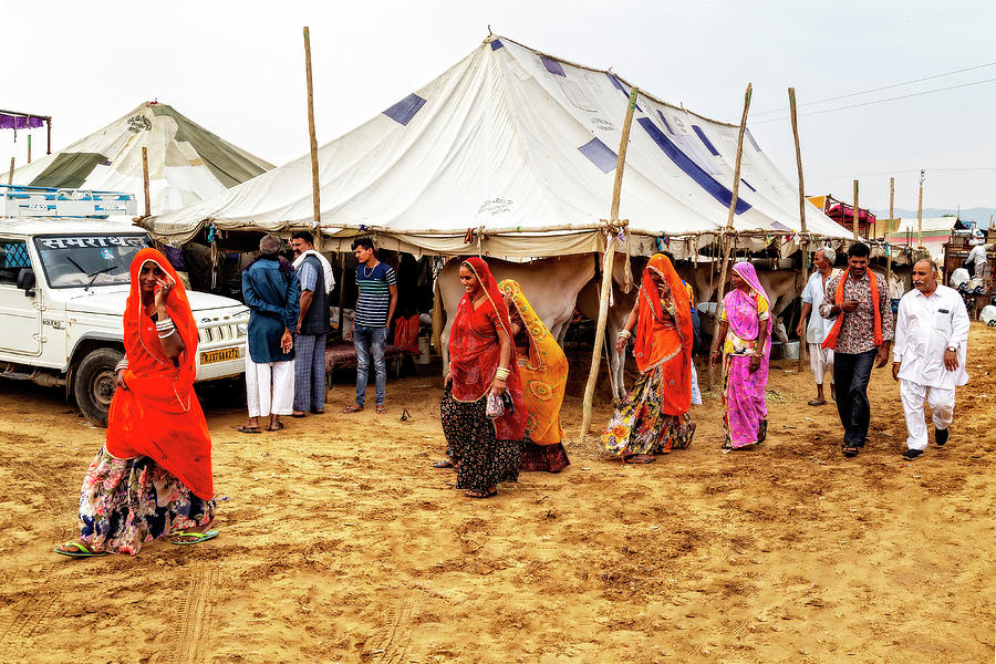Shopping At the Camel Fair by Kay Brewer