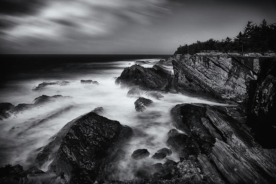 Shore Acres Photograph