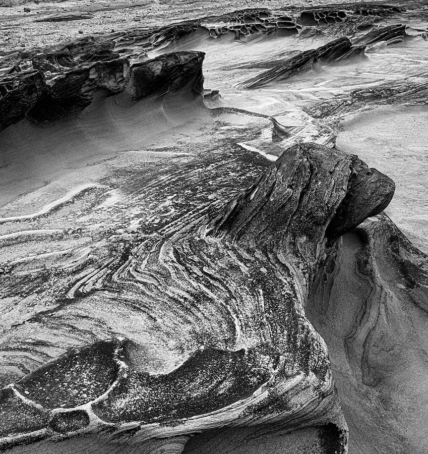 Shore Acres Rocks 5333 Photograph