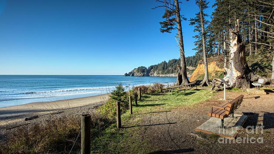 Short Sands Beach Oswald West State Park Oregon Coast by Dustin K Ryan