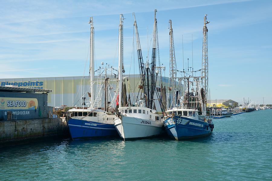 Shrimp Trawlers at Port Canaveral by Bradford Martin