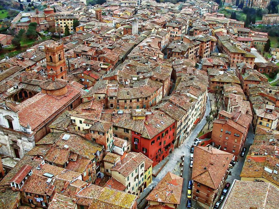 Siena From Above by Anthony Dezenzio