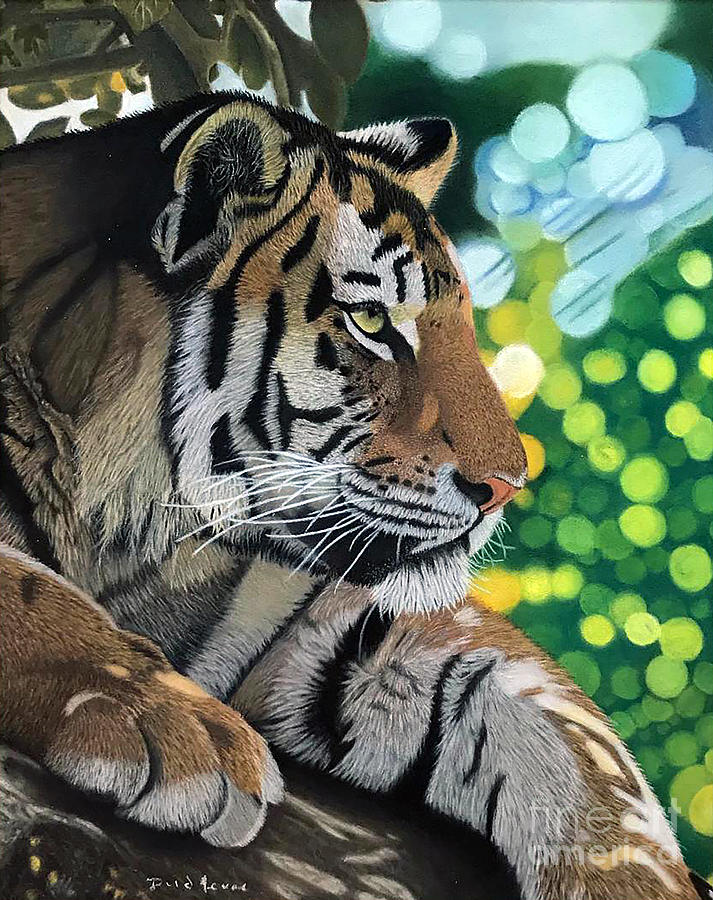 Tiger Photograph - Siesta Tiger Pastel Painting by Dave Nevue