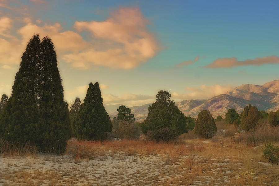Garden Of The Gods Digital Art - Silence_Of_The_Pines_20210315 by Joseph Liberti
