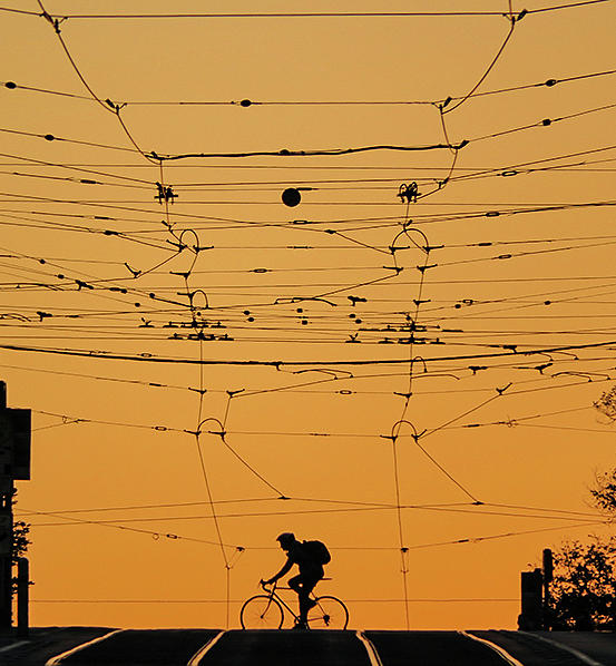 Cycling Photograph - Silhouette of a Cyclist in summer  by Leigh Henningham