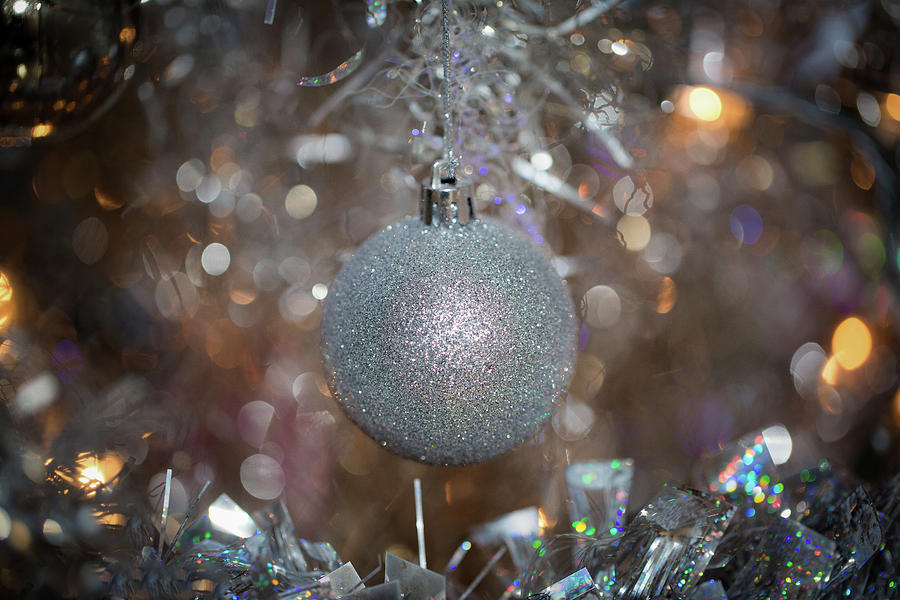 Silver Ball on Silver Tree by Lora J Wilson