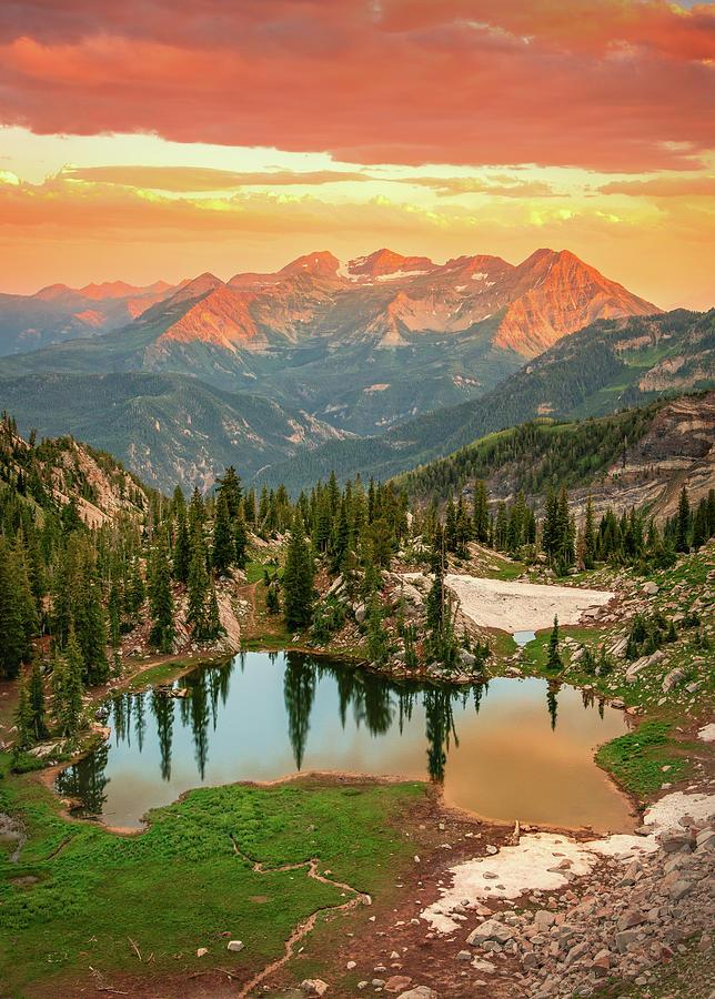 Silver Glance Vertical Golden Sunset Photograph