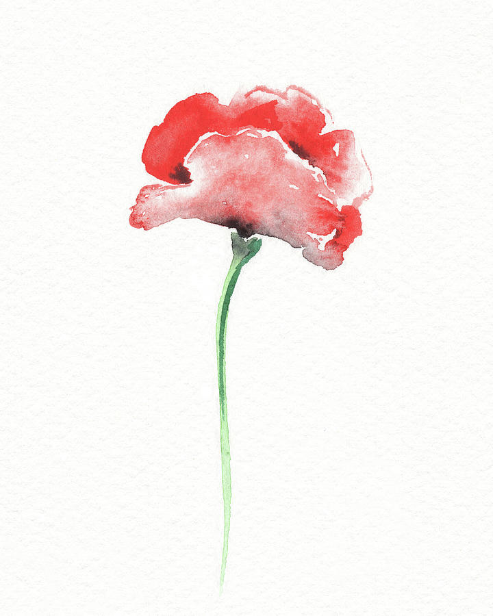 Simple Grace Beautiful Botanical Watercolor Red Poppy Flower II Painting