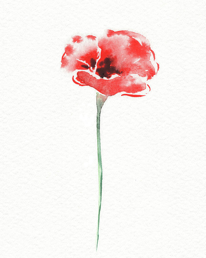 Simple Grace Beautiful Botanical Watercolor Red Poppy Flower IIi Painting