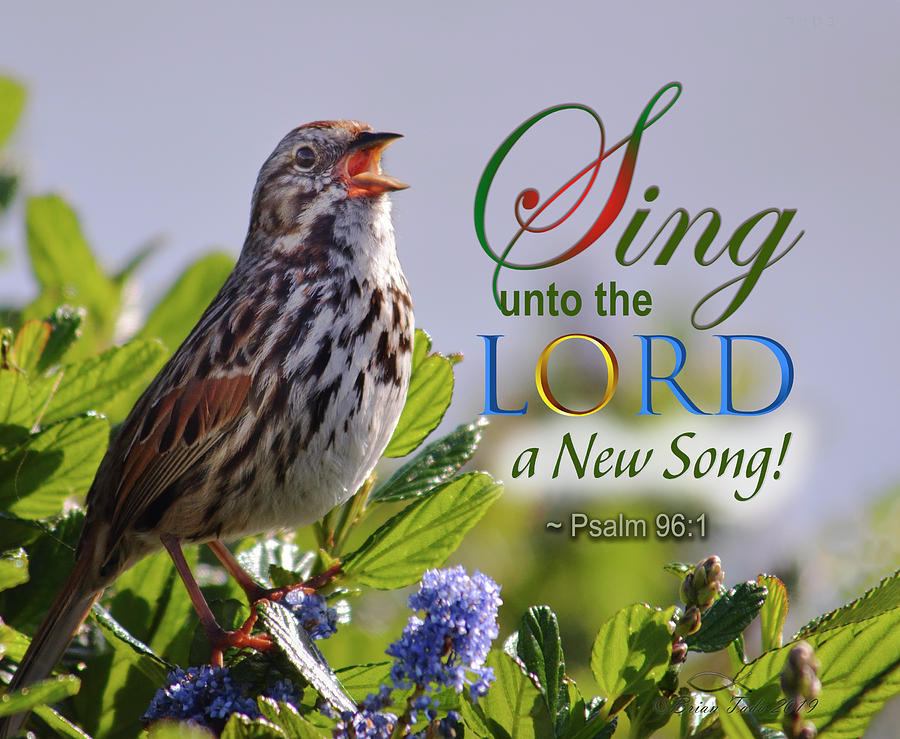 Sing to the Lord by Brian Tada