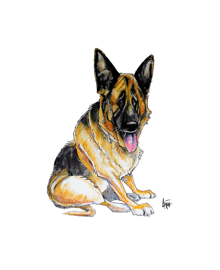 Sitting German Shepherd Drawing