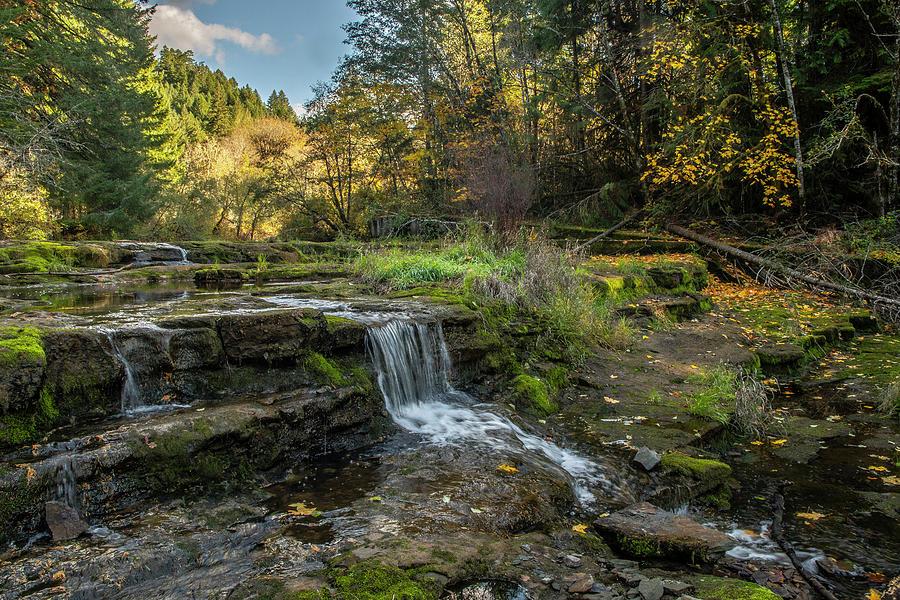 Siuslaw Falls by Matthew Irvin