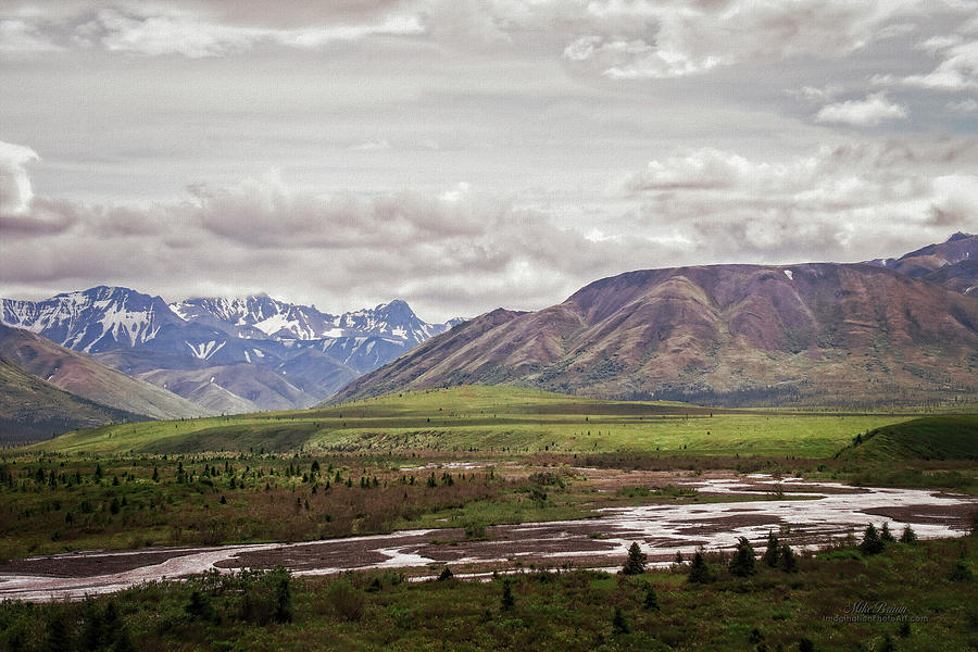Denali National Park Photograph - Six Million Acres by Mike Braun
