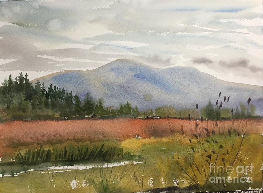 Skagit Valley Painting - Skagit Blueberry Fields in Autumn by Watercolor Meditations