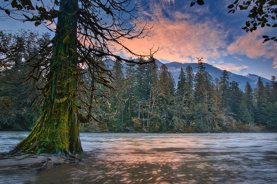 Skagit River Photograph