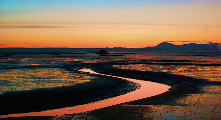 Skagit Wetlands Sy Photograph by Tim Dussault