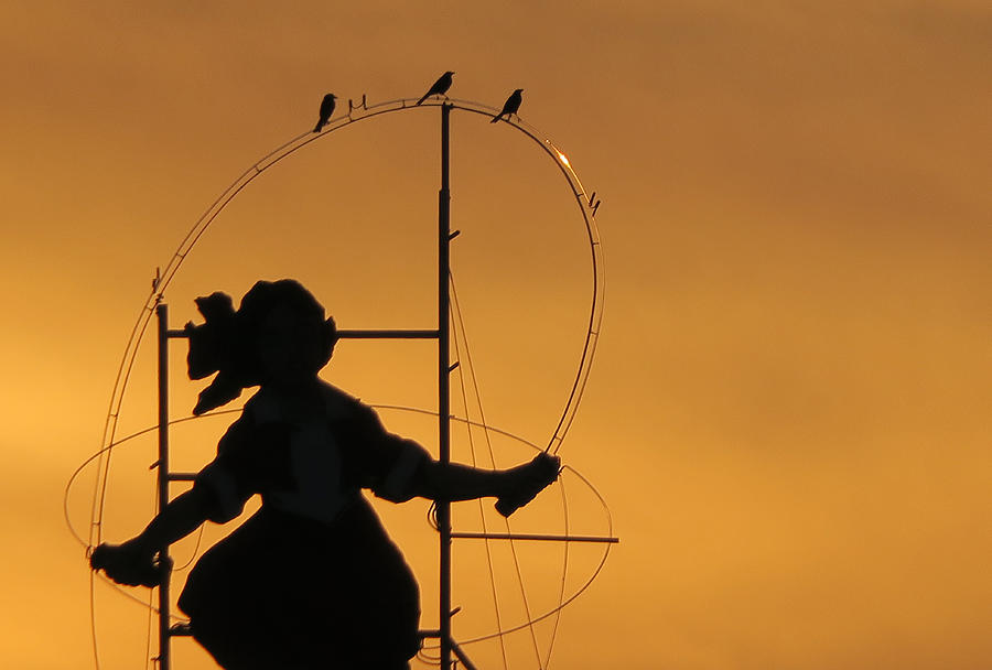Silhouette Photograph - Skipping Girl silhouette  by Leigh Henningham