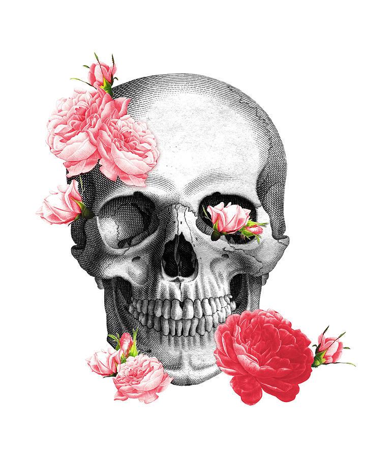 Skull Digital Art - Skull with pink roses framed art print by Madame Memento