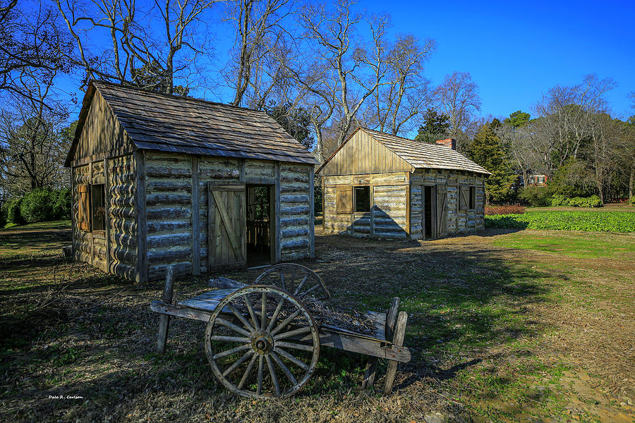 Slave Cabins by Dale R Carlson