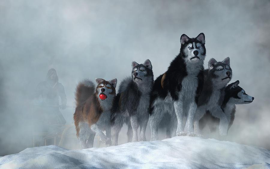 Sled Dogs by Daniel Eskridge