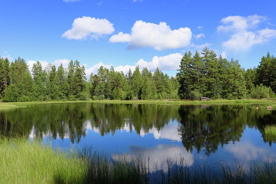 Nature Preserve Photograph - Slogmyrlokens Naturreservat by Maria Jansson