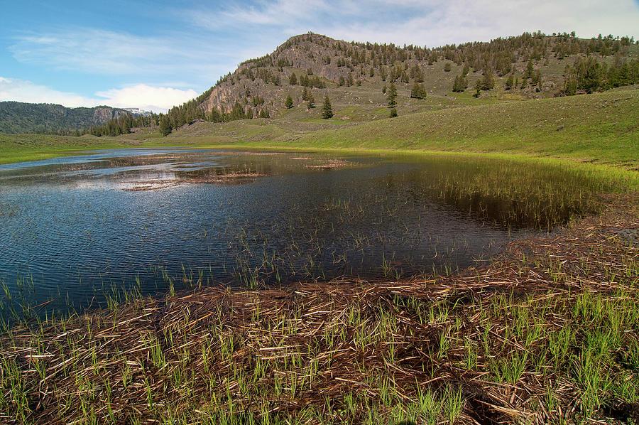 Slough Creek Pond Photograph